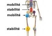 mobilité stabilité